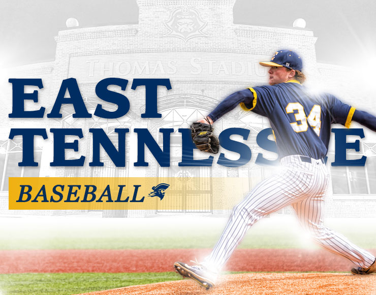 East Tennessee State University Banner