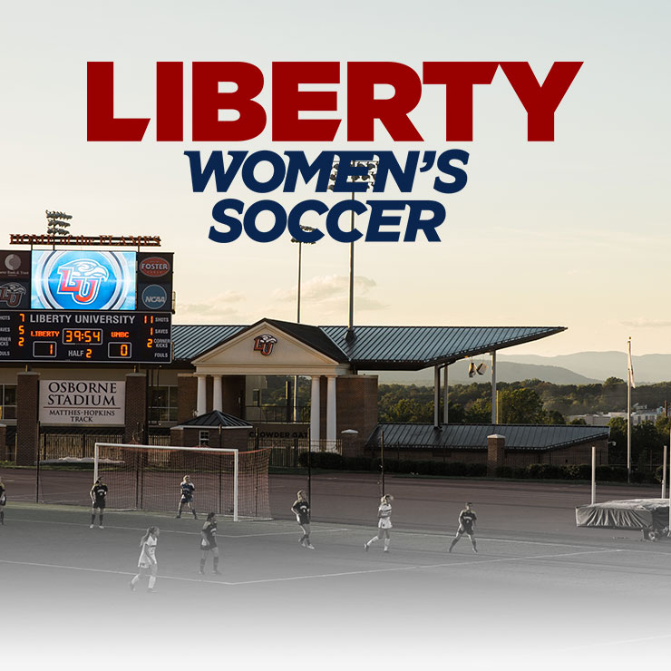 Liberty University Banner